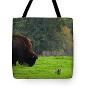 Buffalo In Spring Grass Tote Bag