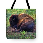 Buffalo In The Badlands Tote Bag