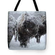 Buffalo In The Blowing Snow Tote Bag