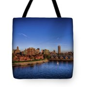 Buffalo New York  Tote Bag