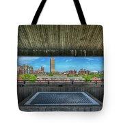 Buffalo New York Window Tote Bag