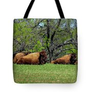 Buffalo Resting In A Field Tote Bag
