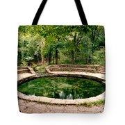 Buffalo Springs Tote Bag