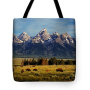 Buffalo Under Tetons 2 Tote Bag