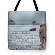 Buffalos In The Snow Tote Bag by Barry C Donovan