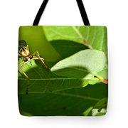 Bug Eyes Tote Bag