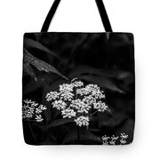 Bug On Flowers Black And White Tote Bag