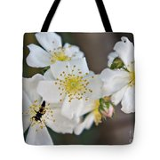 Bugaboo Apple Blossoms Tote Bag