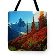 Bugaboos Evening Buzz Tote Bag