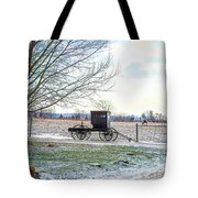 Buggy Alone In Winter Tote Bag