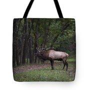 Bull Elk Bugle Tote Bag