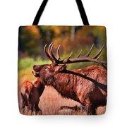 Bugling Elk In Autumn Tote Bag