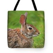 Bugs Bunny.. Tote Bag