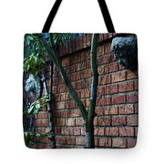 Building Walls Tote Bag