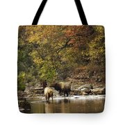 Bull And Cow Elk In Buffalo River Crossing Tote Bag