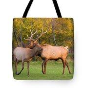 Bull And Cow Elk - Rutting Season Tote Bag