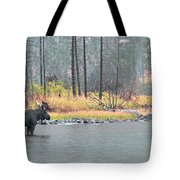 Bull And Cow Moose In East Rosebud Lake Montana Tote Bag