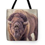 Bull Bison Tote Bag