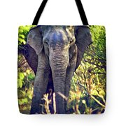 Bull Elephant Threat Tote Bag