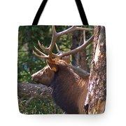 Bull Elk 2 Tote Bag