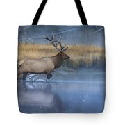 Bull Elk Crossing The Madison River Tote Bag