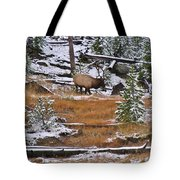 Bull Elk Feeding In Winter Tote Bag