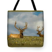 Bull Elk Friends For Now Tote Bag