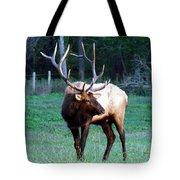 Bull Elk II Tote Bag