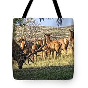 Bull Elk In Point Tote Bag