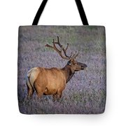 Bull Elk In Velvet Tote Bag