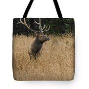 Bull Elk In Yellowstone Tote Bag