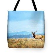 Bull Elk Meadow Tote Bag