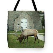 Bull Elk On The Church Lawn Tote Bag