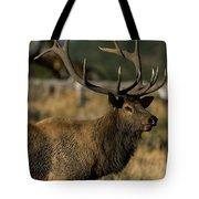 Bull Elk Profile Tote Bag