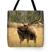 Bull Elk Sideview Tote Bag