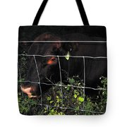 Bull Nibbling On Snowberries Tote Bag