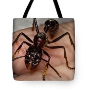 Bullet Ant On Hand Tote Bag
