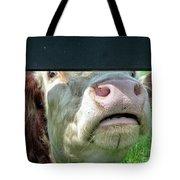 Bull's Eye Peek A Boo Deekflo Tote Bag