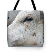 Bullseye2 Tote Bag