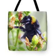 Bumble Bee On Flower Tote Bag