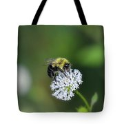 Bumble Bee On White Wild Flower On Banks Of Tennessee River At Shiloh National Military Park Tote Bag