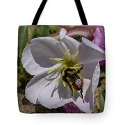 Bumble Bee On Wild Primrose 1 Tote Bag