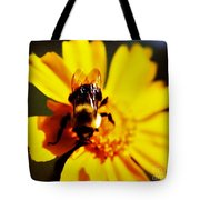 Bumble Bee On Yellow Flower Tote Bag