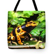 Bumble Bee Poison Frog Tote Bag