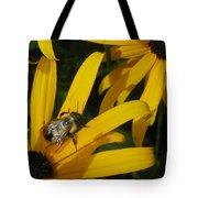 Bumble Bee Sitting On Black-eyed Susan Tote Bag