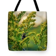 Bumblebee And Canadian Goldenrod 15 Tote Bag