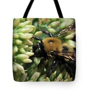 Bumblebee In The Land Of Petals Tote Bag