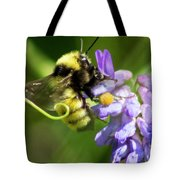 Bumblebee On A Blue Giant Hyssop Tote Bag
