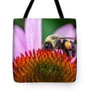 Bumblebee On Coneflower Tote Bag