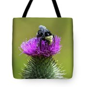 Bumblebee On Thistle Tote Bag